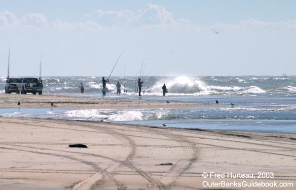 Nc outer banks sport activities for Surf fishing nc